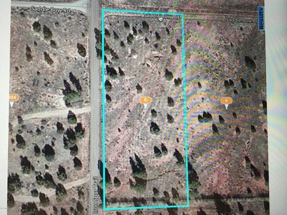 409-26-057 Iron Spur Trail, Show Low, AZ 85901 Photo 3