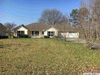 Home for sale: 190 Max Graben Cir., Albertville, AL 35950