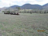 Home for sale: 434 Webb Rd., Rogersville, TN 37857