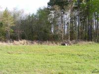 Home for sale: 19531 Sh 31 E., Brownsboro, TX 75756