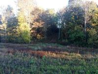 Home for sale: 000 Hwy. 80 W., Farmington, KY 42040
