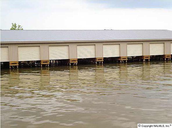 16 Cedar Cove Rd., Guntersville, AL 35976 Photo 4