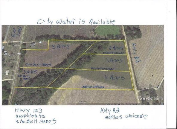 5 Acres Hwy. 103, Slocomb, AL 36375 Photo 15