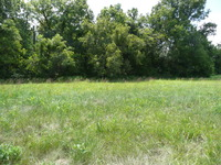 Home for sale: Lot 47 Frontier Ave., Taylorsville, KY 40071