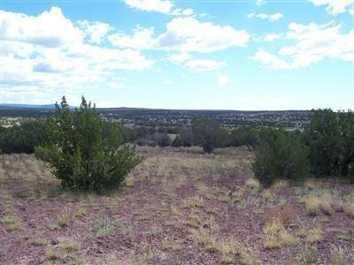 204 Juniperwood Rnch Un 3 Lot 204, Ash Fork, AZ 86320 Photo 11