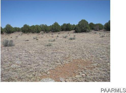 292 Sabrina, Ash Fork, AZ 86320 Photo 14