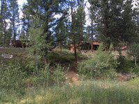 Home for sale: 7 Sheep Creek Loop, Gibbonsville, ID 83463