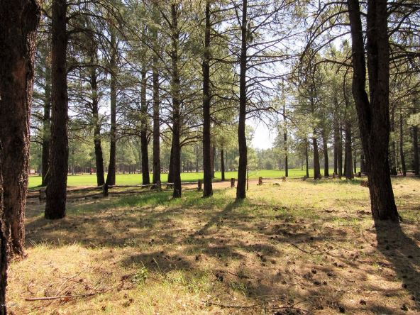 4651 Buck Springs Rd., Pinetop, AZ 85935 Photo 29