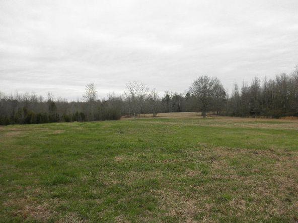 341 Willis Turk Rd. Road, Auburn, AL 36832 Photo 2
