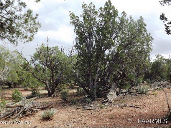 1449 Off Of Big Dip Rd., Seligman, AZ 86337 Photo 8