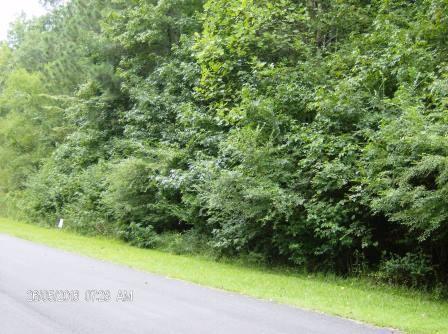 309 Corey Ct., Macon, GA 31220 Photo 6