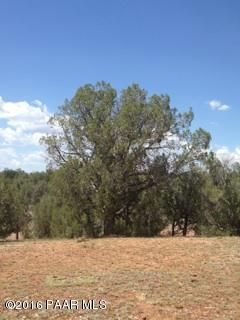 171 Friendship/Conwayden, Ash Fork, AZ 86320 Photo 15