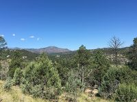 Home for sale: L 30 L 31 Little Creek Hills, Ruidoso, NM 88355