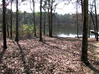 Home for sale: Lot 10 Oaky Knoll Rd., Fort Gaines, GA 39851