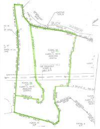 Home for sale: Buck Harbor Rd., Pocomoke City, MD 21851