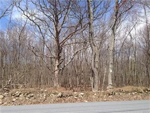 Toad Pasture Rd., Middletown, NY 10940 Photo 6