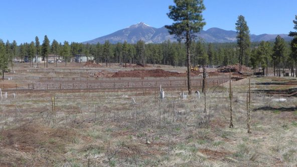2398 W. Cj Dr., Flagstaff, AZ 86001 Photo 1
