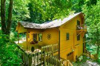 Home for sale: 500 Lynn Cove Rd., Asheville, NC 28804
