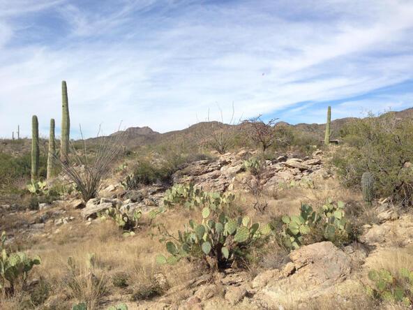 1037 W. Tortolita Mountain, Oro Valley, AZ 85755 Photo 77