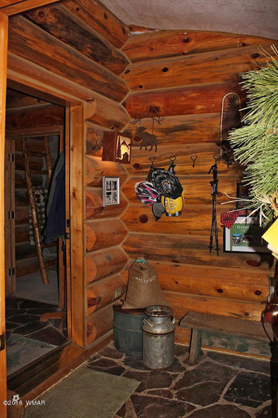 38721 State Route 373, Greer, AZ 85927 Photo 6