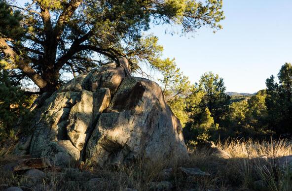 17955 W. Buckhorn Dr., Peeples Valley, AZ 86332 Photo 46