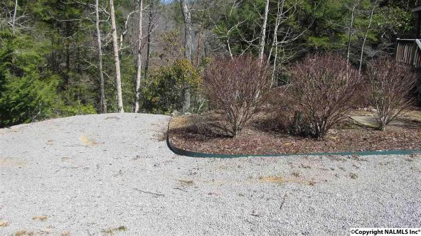 133 Cane Creek Overlook, Double Springs, AL 35553 Photo 27