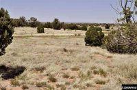 Home for sale: Tbd G Cr N8453, Concho, AZ 85924