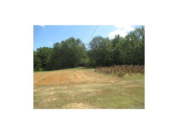 2134 County Rd. 66 ., Deatsville, AL 36022 Photo 34