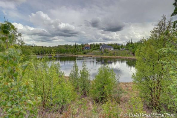 3617 N. Willow Ptarmigan Cir., Wasilla, AK 99654 Photo 13