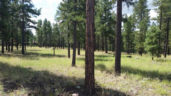 1993 W. Museum Trail, Flagstaff, AZ 86001 Photo 5