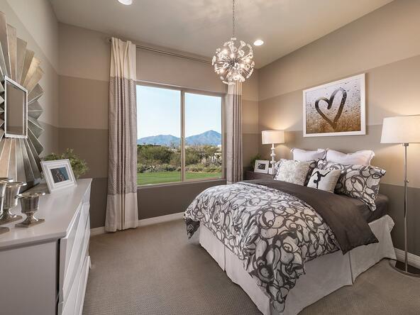11100 N. Delphinus Street, Oro Valley, AZ 85742 Photo 9