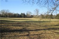 Home for sale: / Brock Creek Rd., Delaware, AR 72835