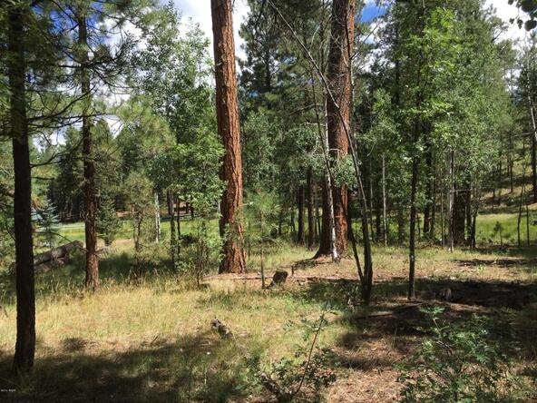 29 Cr 2266, Alpine, AZ 85920 Photo 11