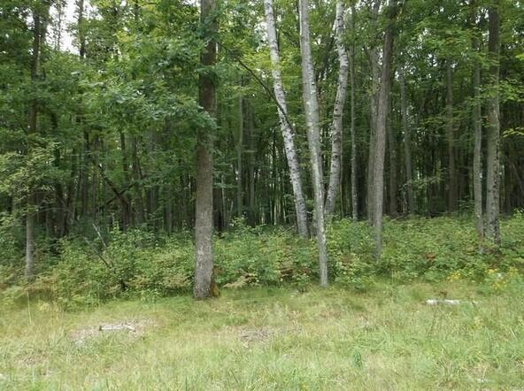 Lot7&Out7 Hydro Ct., Crivitz, WI 54114 Photo 14