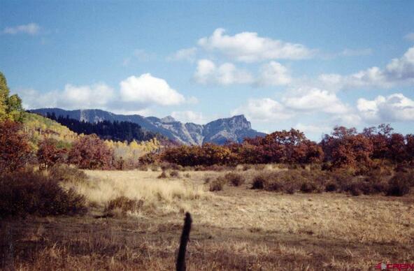 663 Usfs Rd. X Esmt, Pagosa Springs, CO 81147 Photo 12