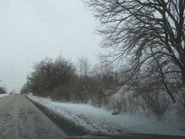 8601 West Sauk Trail Rd., Frankfort, IL 60423 Photo 5