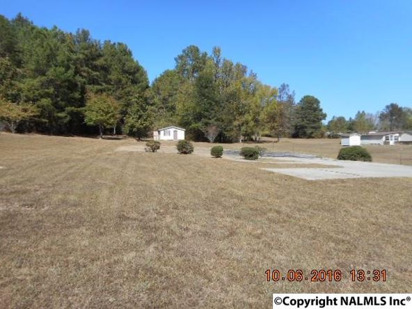 1211 County Rd. 24, Ashville, AL 35953 Photo 1