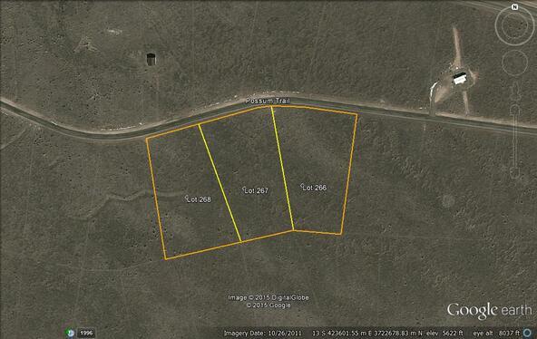 L267 Possum Trail, Carrizozo, NM 88301 Photo 10