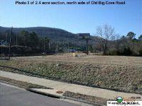 Home for sale: 1001 Old Big Cove Rd., Brownsboro, AL 35741