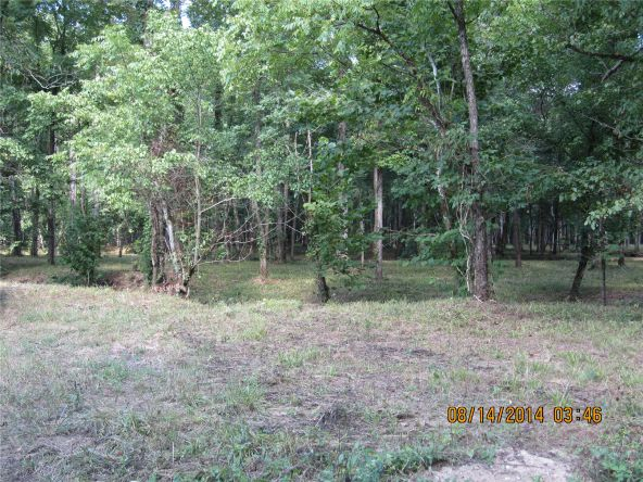 1865 County Rd. 99, Gaylesville, AL 35973 Photo 6