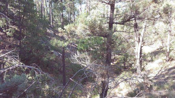 2655 E. Preddy, Prescott, AZ 86305 Photo 23