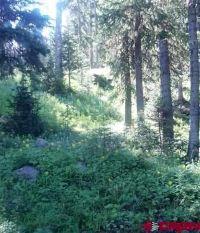 Home for sale: Tbd Upper Twin Lake Dr., Cedaredge, CO 81413