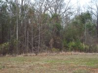 Home for sale: Lot 15 County Rd. 553, Valley, AL 36854