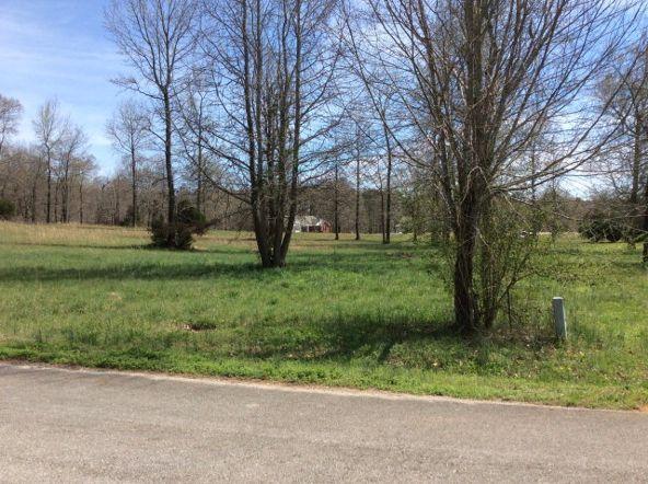 442 River Front Rd., Rogersville, AL 35652 Photo 4