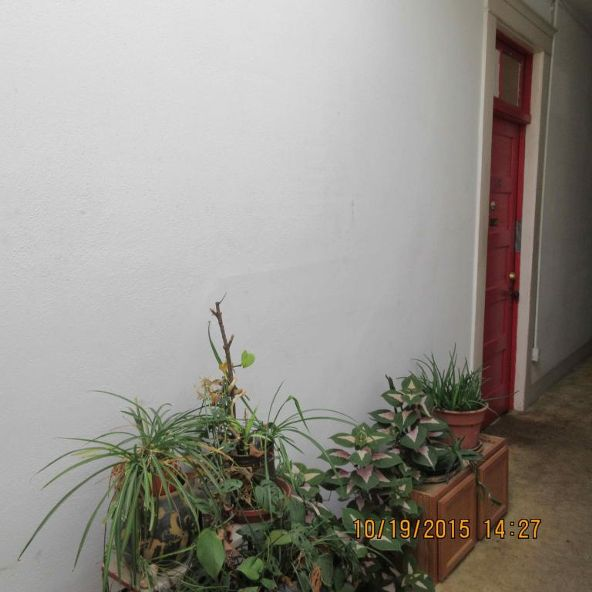 317 Arizona St., Bisbee, AZ 85603 Photo 38