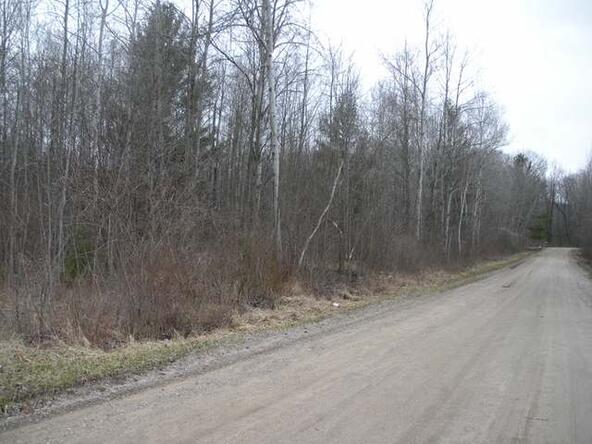 On Wild Cherry, Gladwin, MI 48624 Photo 1