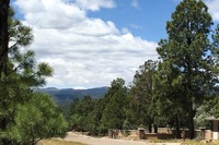 Home for sale: 119 Pat Thompson Ct., Ruidoso, NM 88345