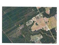Home for sale: Tbd Old River Rd., Pamplico, SC 29583