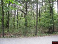 Home for sale: Mallard Dr., Diamond City, AR 72630