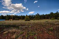 Home for sale: 61 Juniper St. St., Parks, AZ 86018